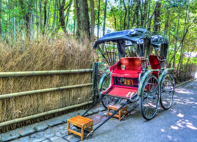 京都・嵐山 湯豆腐竹むらでアレルギー対応して頂いた話